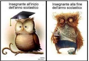 owl teacher b4 and after
