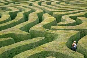 grass_maze