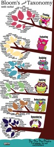 MacMeekin's infographic on Blooms 'revised' Taxonomy